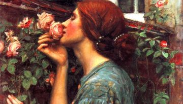 My Sweet Rose !908 John William Waterhouse